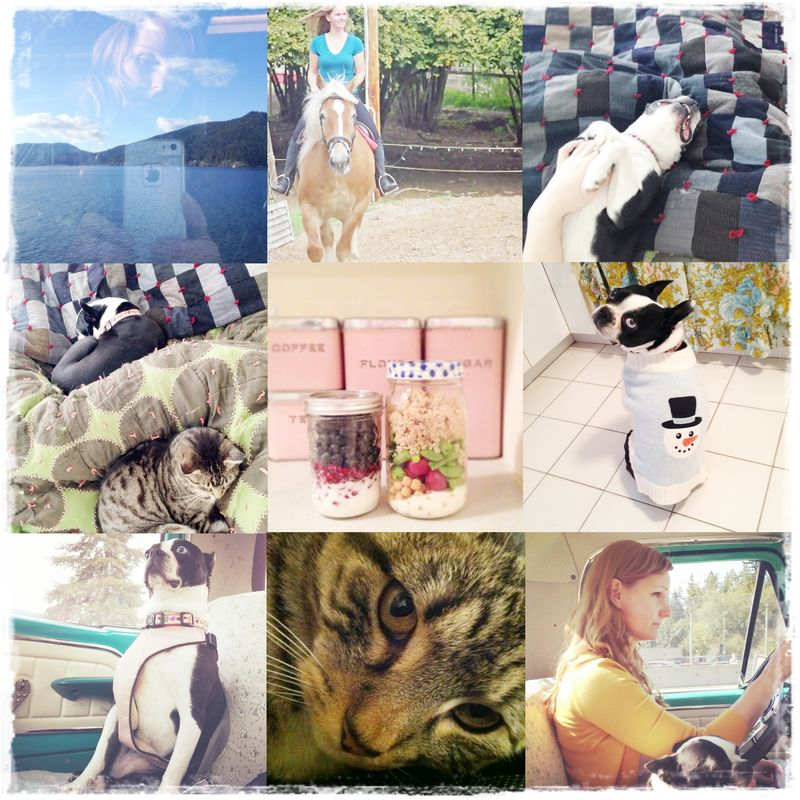 Instagram Collection 2